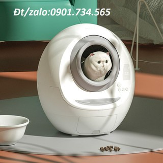 Nhà vệ sinh mèo hình tròn cao cấp - gd399-2 thumbnail