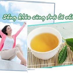 Lá vối khô Nam Định làm giảm mỡ máu, chữa gout, hỗ trợ điều trị tiểu đường