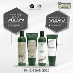 Bộ dầu gội đầu xả Weilaiya tinh chất gừng hỗ trợ móc tóc và hỗ trợ rụng tóc mẫu mới