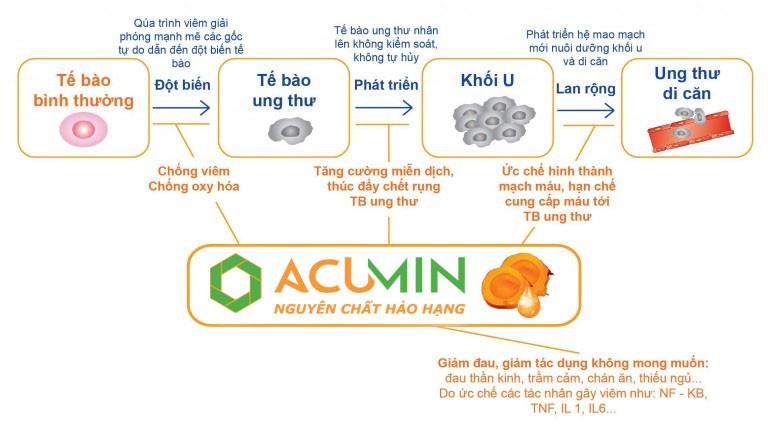 Tinh Bột Nghệ Đỏ Nguyên Chất Acumin Hộp 500Gr - TBNACM500 2