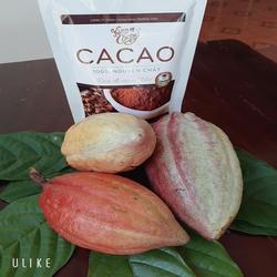 Bột Cacao nguyên chất 500gr Nam Trường Sơn (ĐẶC SẢN BUÔN MA THUỘT)