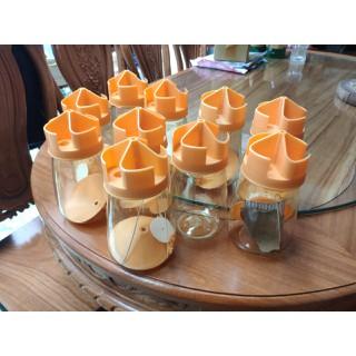 10 bộ dụng cụ kèm mồi thuốc ẫn dụ diệt phòng ngừa Ruồi vàng cho Vườn cây ăn trái và Vườn hoa Lan - 10bodietRVkemmoi thumbnail