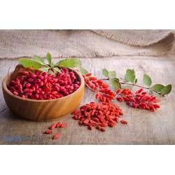 Gói 50g kỷ tử sấy khô loại ngọt đều hạt