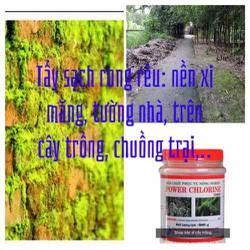 Thuốc tẩy sạch rong rêu trên cây trồng- sân gạch- tường nhà đóng rong rêu và xát khuẩn chuồng trại rất hiệu quả