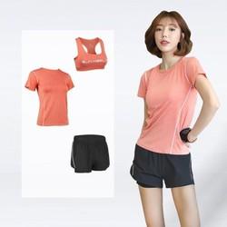 Set 3 món đồ tập gym nữ , áo thun, áo bra có mút, quần đùi 2 lớp tập yoga