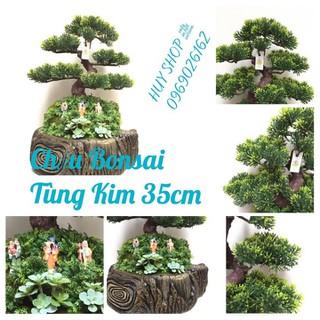 CHẬU BONSAI NHÂN TẠO - CHẬU BONSAI TÙNG KIM 35CM - CHAU-BONSAI-TUNG-35CM thumbnail