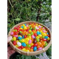 500gr kẹo dẻo vị trái cây sắc màu