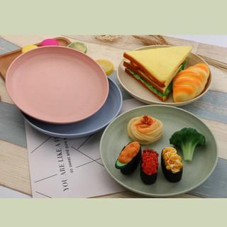 Combo 3 Đĩa lúa mạch màu pastel - DLM1-1 thumbnail