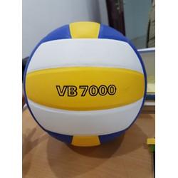 Bóng chuyền Thăng Long VB 7000