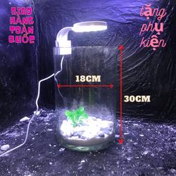 Bể cá mini để bàn kèm phụ kiện tiểu cảnh phân loại combo có hồ lọc đèn- bể cá mini - bế cá trụ tròn - ống thủy tinh