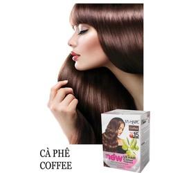 (màu cafe) dầu gội nhuộm tóc phủ bạc USA US HAIR HỘP 10 GÓI