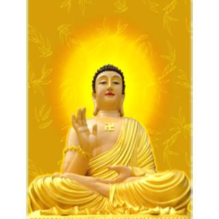 Tranh đính đá Phật Tổ Như Lai LV294 - LV294 thumbnail