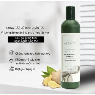 Dầu gội gừng (Weilaiya Ginger Shampoo) giúp tóc khỏe, ngăn ngừa rụng, kích mọc tóc, mềm mượt - 6971025880370 thumbnail