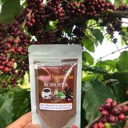 [giá dùng thử 1 ngày duy nhất-cà phê vụ mùa mới] 100g cà phê robusta rang mộc dạng bột nguyên chất-hậu vị chua ngọt thanh mạnh