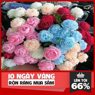 Hoa hồng lụa giả - Hoa hồng lụa giả - Hoa hồng lụa giả thumbnail