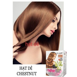 (2 gói màu hạt dẻ ) dầu gội nhuộm tóc phủ bạc usa us hair chỉ 15 phút phủ tóc bạc