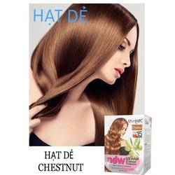 (10 gói màu hạt dẻ ) dầu gội nhuộm tóc phủ bạc usa us hair chỉ 15 phút phủ tóc bạc