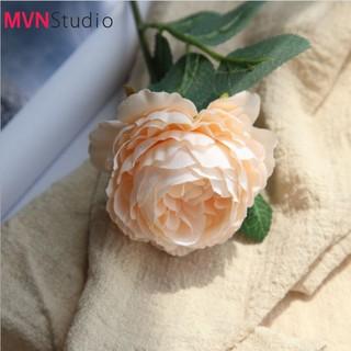 MVN Studio - Ins hoa mẫu đơn phụ kiện decor chụp ảnh trang trí nhà cửa - 00000000117 thumbnail