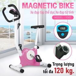 BG Xe đạp tập thể dục tại nhà EXERCISE BIKE-YS02 Màu hồng