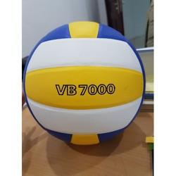 Bóng Chuyền Thăng Long VB7000 - SH1237