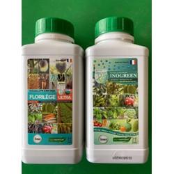 Cặp đôi sản phẩm sinh học Florilège Ultra + Inogreen của AGRONUTRITION