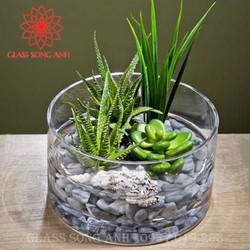 Bình bông thủy tinh trang trí D20x10, Bình cắm hoa thủy tinh trụ, lọ hoa hình trụ, ống trụ tròn