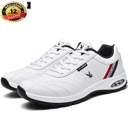 Giày sneaker nam thời trang cao cấp  - TS02