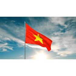 Cờ Tổ Quốc- QUốc Kỳ Việt Nam- Lá cờ đỏ sao vàng kích thước 0,8x1,2m- bán sỉ, lẻ