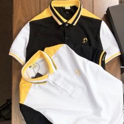 Áo thun nam cổ trụ vàng đen có size lớn trên 80kg