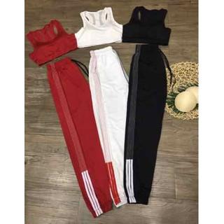 Bộ quần áo thể thao tập gym yoga - Bộ jogger chỉ nổi bra lưới sườn - BJCN thumbnail