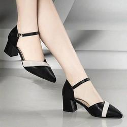 Giay cao got--Giày cao gót nữ*giay sandal nu*giay bit mui