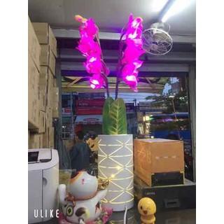 Cây hoa đèn led 80cm [ĐƯỢC KIỂM HÀNG] 40126766 - 40126766 thumbnail