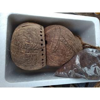 Bộ 3 chậu gáo dừa 14-16cm, chậu treo 3 tầng trồng cây [ĐƯỢC KIỂM HÀNG] 23111753 - 23111753 thumbnail