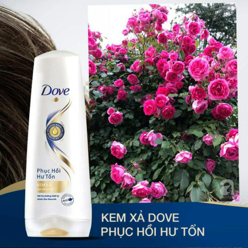Kem xả Dove 140g   hàng khuyến mại