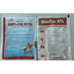gia cầm tụ huyết trùng, sưng phổi,nội thương tiêu chảy ampicoli+hanflor