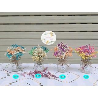 Hoa Khô - Lọ hoa khô - Hoa Khô - Lọ hoa khô thumbnail