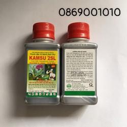 KAMSU 2SL Chuyên trừ bệnh thán thư đối với các loại cây trồng Chai 100ml
