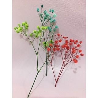 Hoa baby khô - hoa khô trang trí - Hoa baby khô - hoa khô trang trí thumbnail