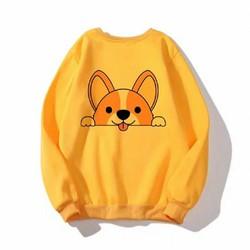 Áo khoác hoodie nam nữ thời trang Hàn Quốc, (L dưới 65Kg,XL 75Kg), áo thun nam nữ big size
