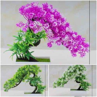 chậu cây bonsai giả trang trí nội thất - BS019 thumbnail