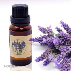 Tinh Dầu Oải Hương Lavender xông phòng 10ml thiên nhiên nguyên chất 100%