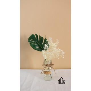 Cành lá rùa trang trí,chụp ảnh sản phẩm dài 25cm - CLR thumbnail