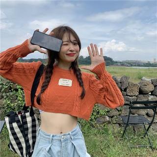 Áo len kiểu croptop tay dài tông pastel thời trang phong cách ulzzang Hàn Quốc - ATD016 thumbnail