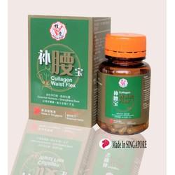 HỖ TRỢ XƯƠNG KHỚP SINGAPORE Collagen Waist Flex CHÍNH HÃNG