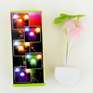 Đèn Ngủ Nấm Cảm Biến Phát Quang Tự Động khi trời tối hàng cao cấp - đèn nấm thumbnail