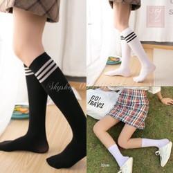 set 5 đôi tất vớ dài nữ vintage Hàn Quốc