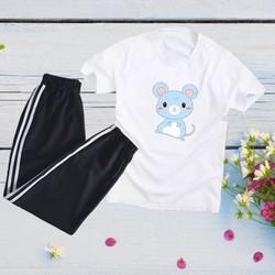 Sét Bộ Đồ Thời Trang Quần Áo Nữ Đón Hè Siêu Xinh Cute Mặc Đi Chơi, Áo Cotton In 3D Hoạt Hình Cartoon Mèo Xanh Kèm Quần Đen Thun Bo Chun Gấu Phong Cách