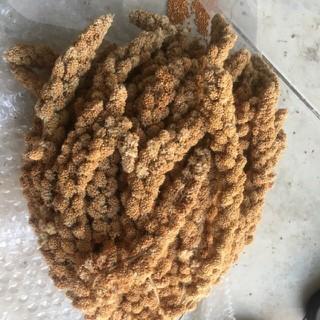 Kê Chùm Gò Công Thức Ăn Cho Vẹt gói 100g - 100gchumke 4