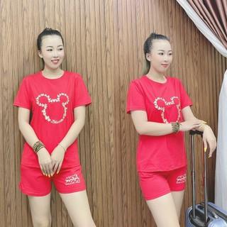Set Bộ Cotton Đùi In Tai Thú Đáng Yêu - SBN_9109 thumbnail