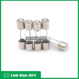 cầu chì ống - Cầu Chì Ống 5x20mm 250V Đủ Loại - SP02331 thumbnail